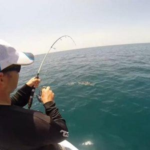 Cairns Fishing Tour