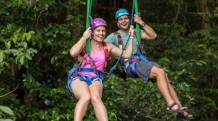 Jungle swing Cape Tribulation, North Queensland Australia