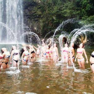 Atherton Tablelands Waterfalls Tour